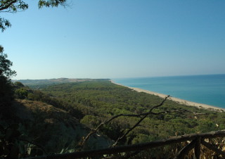 Pineta e spiaggia di Bovo Marina